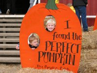 200410 - Pumpkin Patch